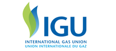 Browse the website of the International Gas Union