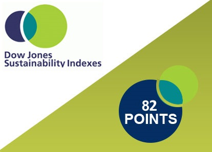 Sustainability indices