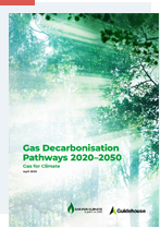 Gas For Climate report