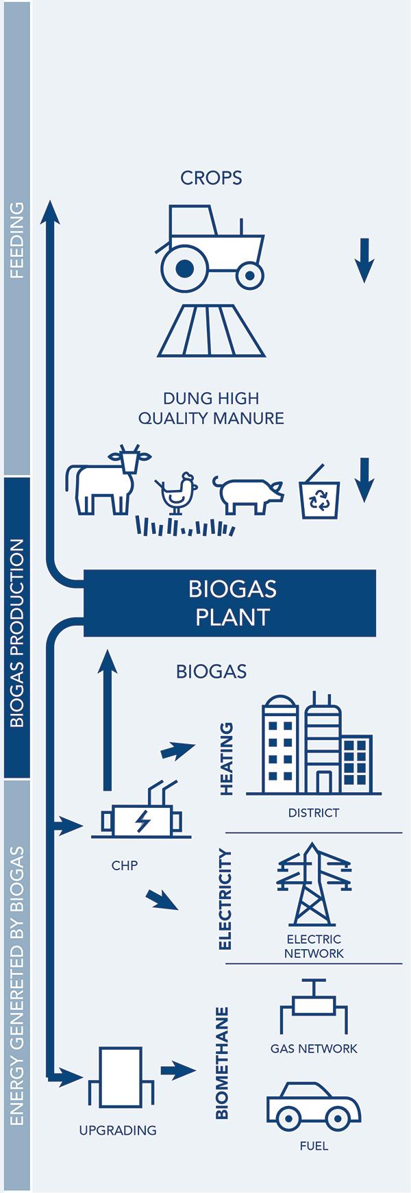 Biomethane Biogas Plant Diagram Biometano Infografica